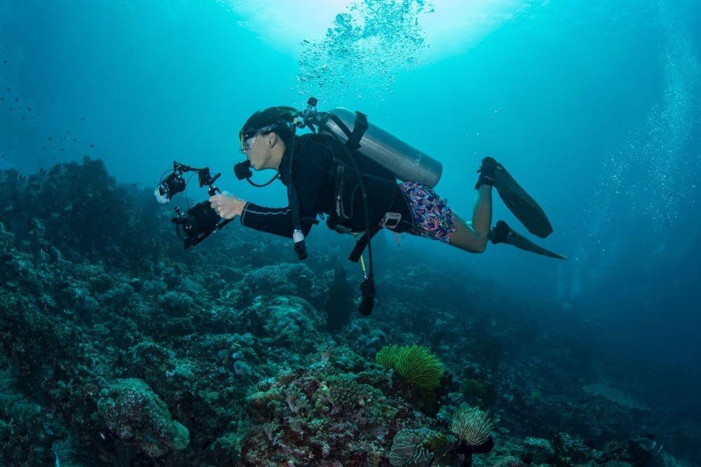 Life Below Water Ganden Medved Po
